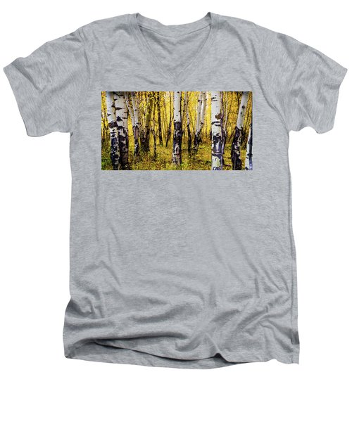 Quakies In Autumn Men's V-Neck T-Shirt