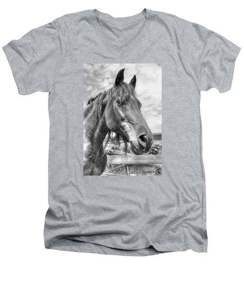 Quarter Horse Portrait Men's V-Neck T-Shirt