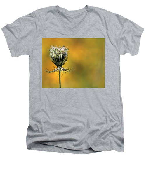 Queen Anne's Lace Stony Brook New York Men's V-Neck T-Shirt by Bob Savage