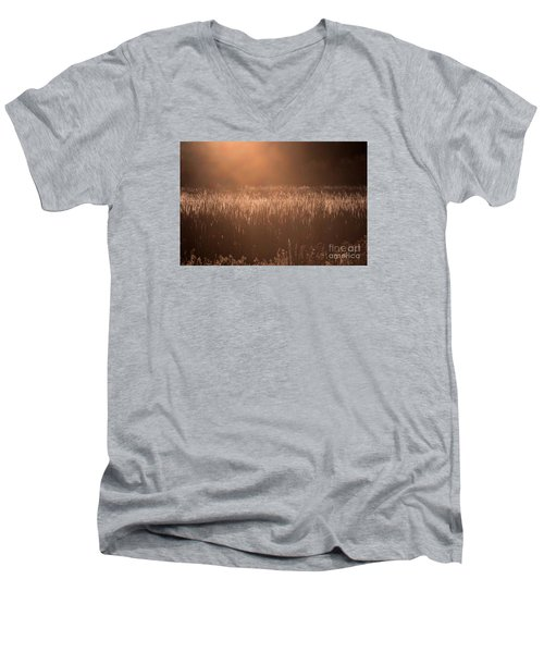 Quiet Evening Light Men's V-Neck T-Shirt