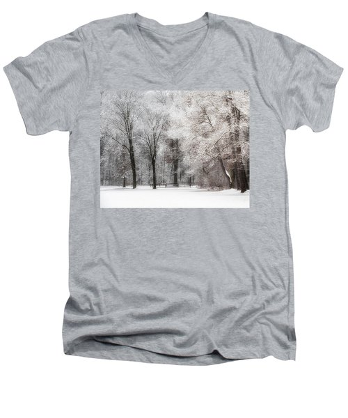 Quiet Winter  Men's V-Neck T-Shirt