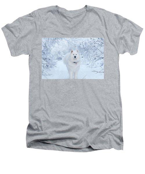 Quinn The Mighty Samoyed Men's V-Neck T-Shirt