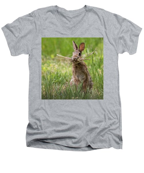 Rabbit Collector Square Men's V-Neck T-Shirt by Terry DeLuco
