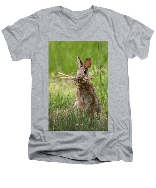 Rabbit Collector  Men's V-Neck T-Shirt by Terry DeLuco