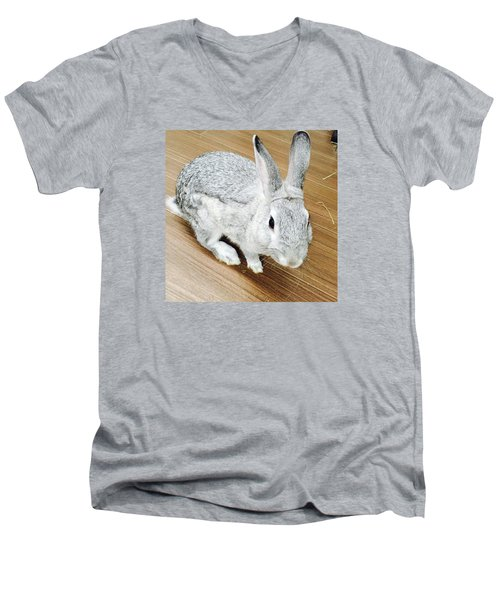 Rabbit Men's V-Neck T-Shirt by Nao Yos