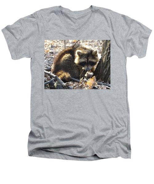 Raccoon Men's V-Neck T-Shirt