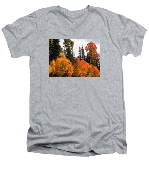 Men's V-Neck T-Shirt featuring the photograph Radiant Autumnal Forest by Deborah Moen
