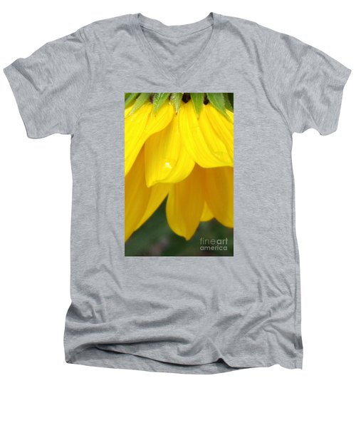 Rain And Sunshine On A Colorado Wildflower Men's V-Neck T-Shirt
