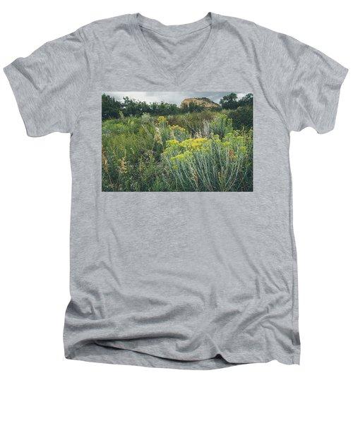 Rain Glow Men's V-Neck T-Shirt