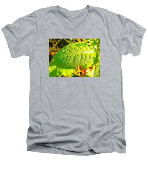Rain On Leaf Men's V-Neck T-Shirt by Craig Walters