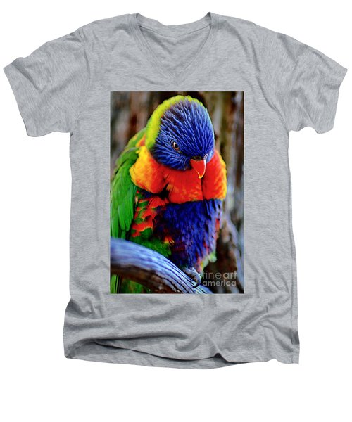 Rainbow Men's V-Neck T-Shirt