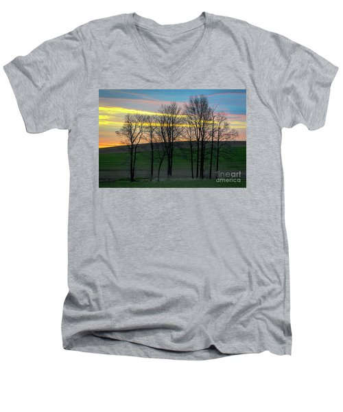 Rainbow Color Tree Horizon Men's V-Neck T-Shirt