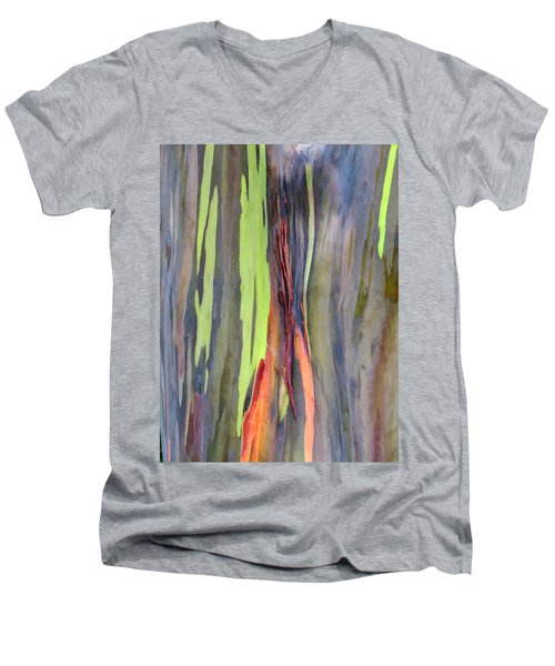 Rainbow Eucalyptus 13 Men's V-Neck T-Shirt