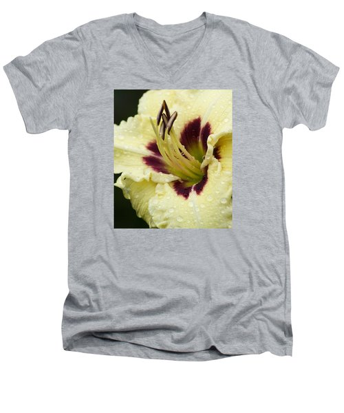 Raindrops On A Petal Men's V-Neck T-Shirt by Tiffany Erdman