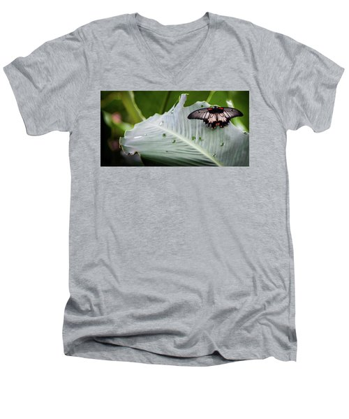 Raining Wings Men's V-Neck T-Shirt by Karen Wiles
