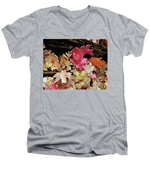 Rainy Day Leaves Men's V-Neck T-Shirt
