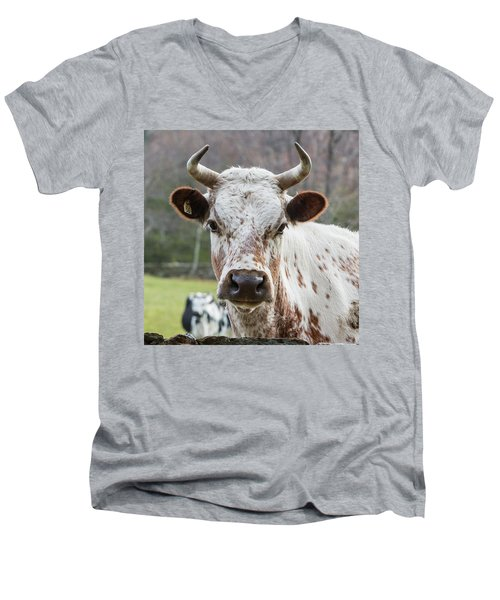 Men's V-Neck T-Shirt featuring the photograph Randall Cow by Bill Wakeley