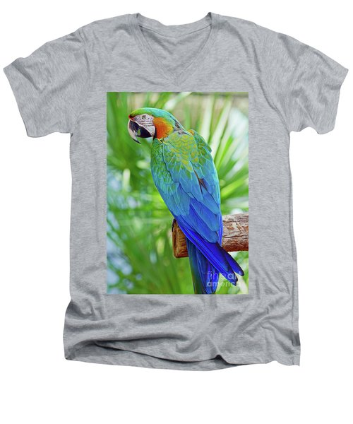 Rapsody In Blue Men's V-Neck T-Shirt