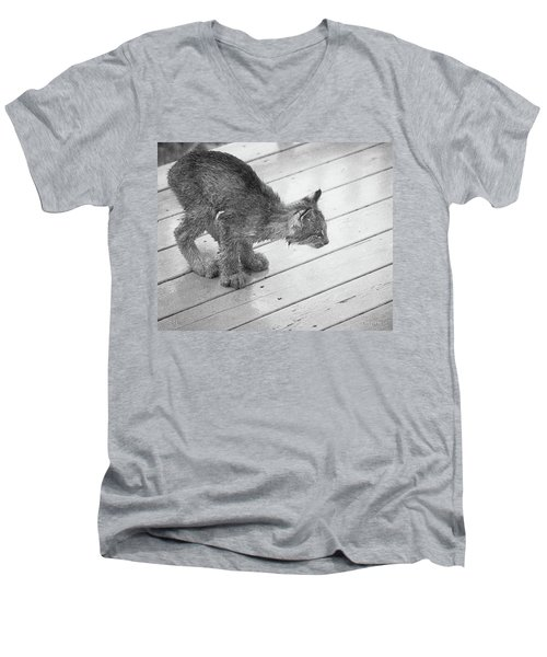Crouching Kitty Men's V-Neck T-Shirt