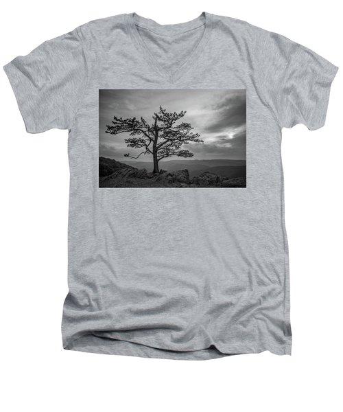 Raven's Roost Men's V-Neck T-Shirt