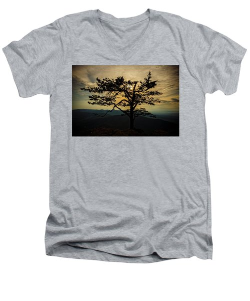 Ravens Roost Hdr Men's V-Neck T-Shirt