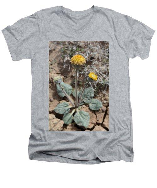 Rayless Daisy Men's V-Neck T-Shirt by Jenessa Rahn