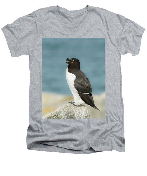 Razorbill Portrait Men's V-Neck T-Shirt
