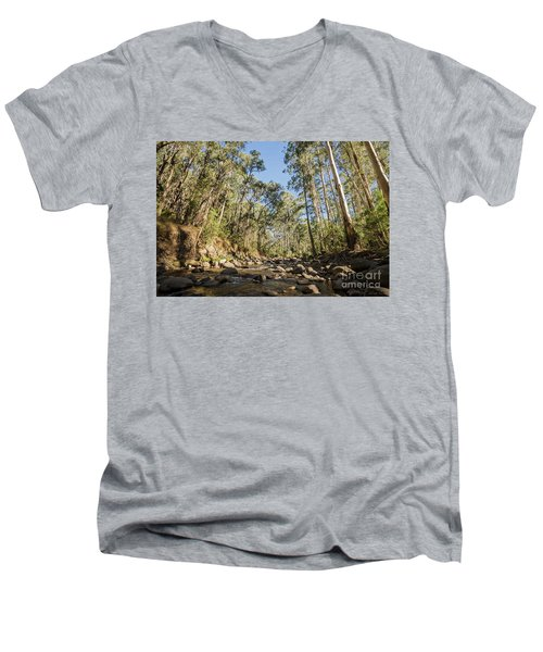 Men's V-Neck T-Shirt featuring the photograph Reaching Skyward by Linda Lees