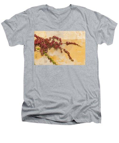 Reaching Men's V-Neck T-Shirt
