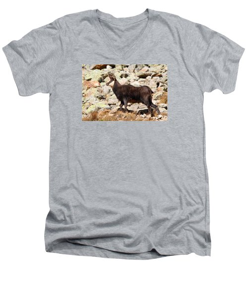 Men's V-Neck T-Shirt featuring the photograph Ready For The Challenge by Richard Patmore