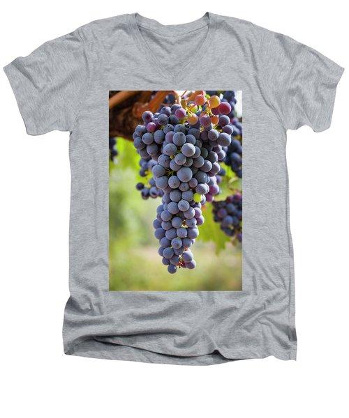 Ready For The Crush Men's V-Neck T-Shirt