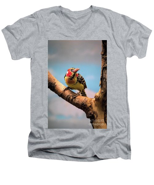 Red And Yellow Barbet Men's V-Neck T-Shirt