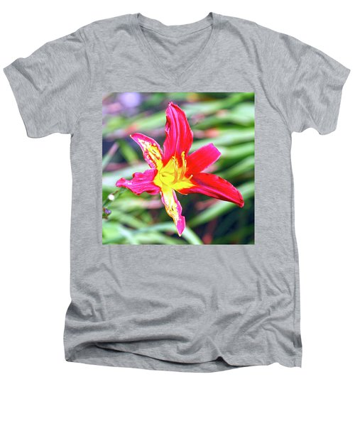 Red And Yellow Orchid Men's V-Neck T-Shirt
