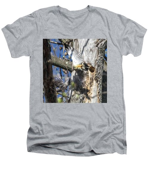 Red Bellied Woodpecker Chasing An Attacking Starling Men's V-Neck T-Shirt