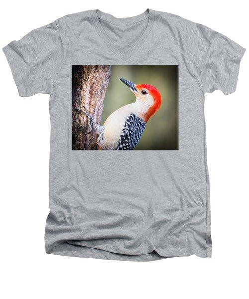 Red-bellied Woodpecker Men's V-Neck T-Shirt