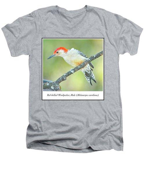 Red Bellied Woodpecker, Male Men's V-Neck T-Shirt