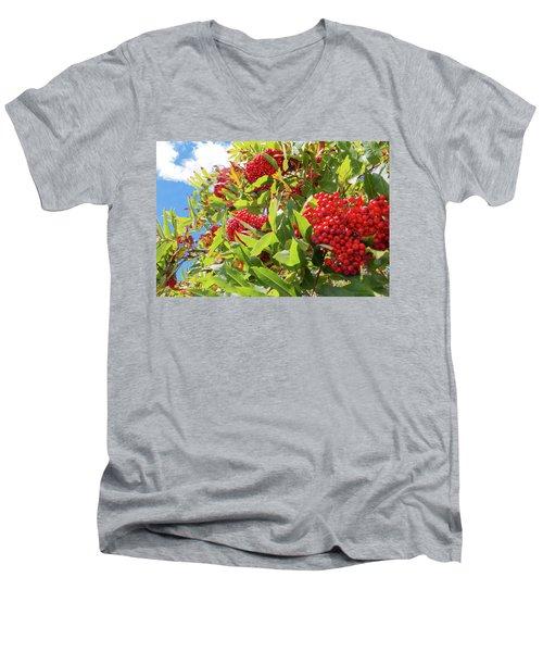 Red Berries, Blue Skies Men's V-Neck T-Shirt