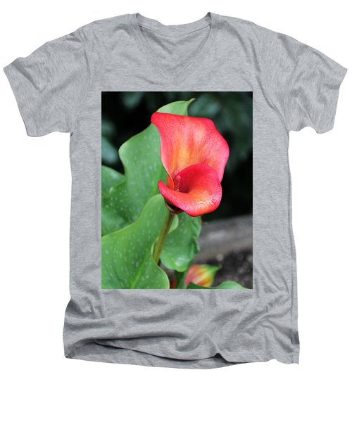 Red Calla Lily Men's V-Neck T-Shirt