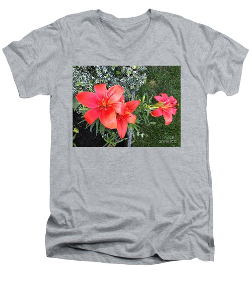 Red Day Lilies Men's V-Neck T-Shirt