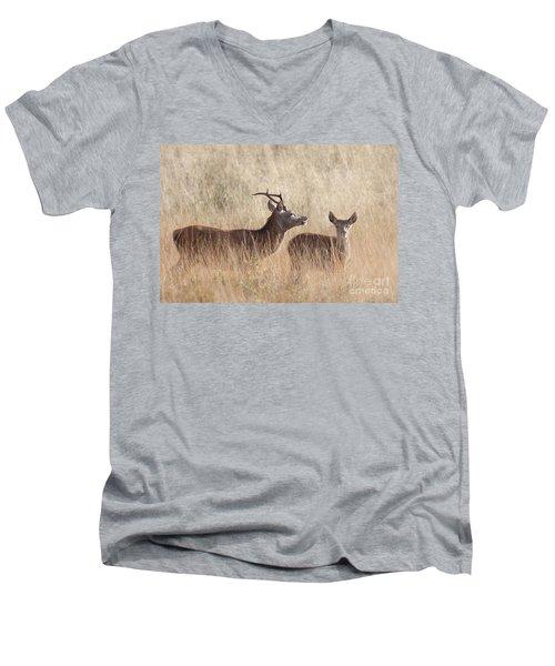 Red Deer Stag And Hind Men's V-Neck T-Shirt