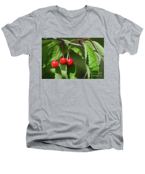 Men's V-Neck T-Shirt featuring the photograph Red Delicious by Kennerth and Birgitta Kullman
