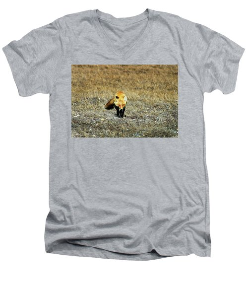 Men's V-Neck T-Shirt featuring the photograph Red Fox On The Tundra by Anthony Jones