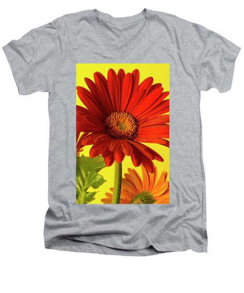 Men's V-Neck T-Shirt featuring the photograph Red Gerbera Daisy 2 by Richard Rizzo