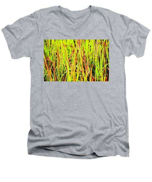 Red Green And Yellow Grass Men's V-Neck T-Shirt
