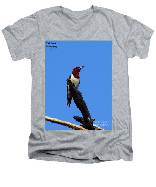 Red Headed Woodpecker On A Snag Men's V-Neck T-Shirt