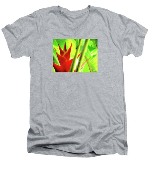 Red Heliconia Men's V-Neck T-Shirt