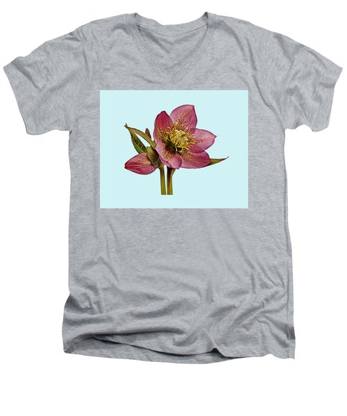 Men's V-Neck T-Shirt featuring the photograph Red Hellebore Blue Background by Paul Gulliver