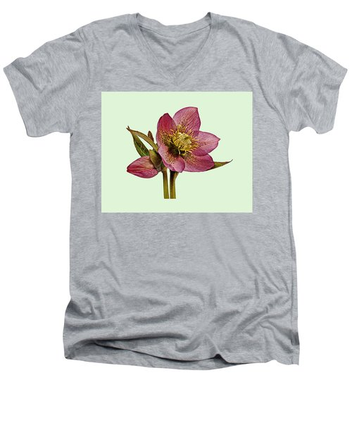 Red Hellebore Green Background Men's V-Neck T-Shirt