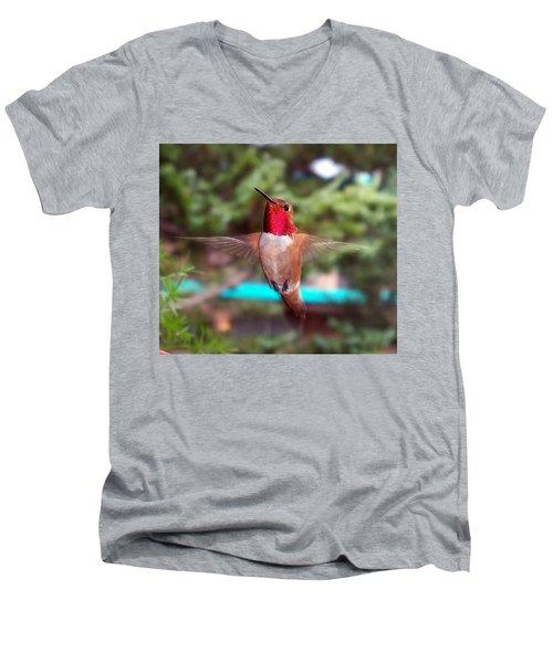 Red Hummingbird Men's V-Neck T-Shirt