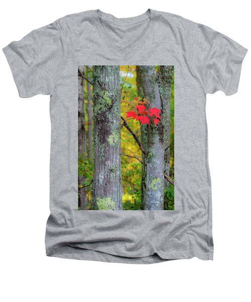 Red Leaves Men's V-Neck T-Shirt